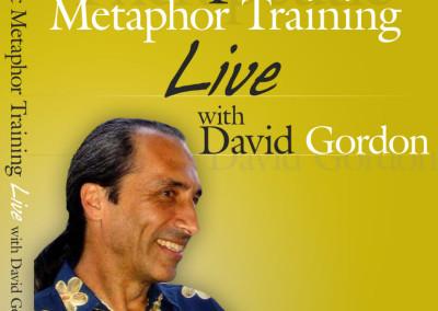 Therapeutic Metaphors
